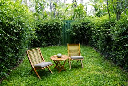 3 tipps f r mehr sichtschutz im eigenen garten. Black Bedroom Furniture Sets. Home Design Ideas