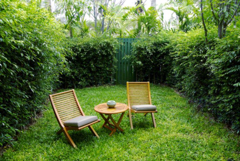 3 Tipps für mehr Sichtschutz im eigenen Garten - RatGeberZentrale