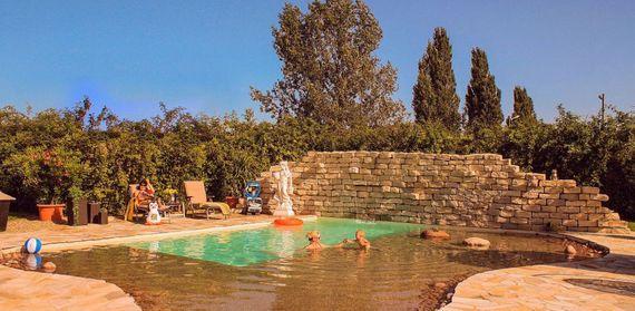 Schwimmbad bauen: 8 goldene Tipps für das Garten-Paradies ...